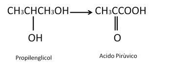 metabolismo_propilenglicol